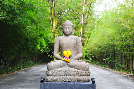 the stone buddha in the bamboo forest Stock Photo