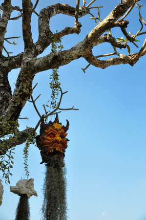 the hanging head of demon and devil on a tree photo