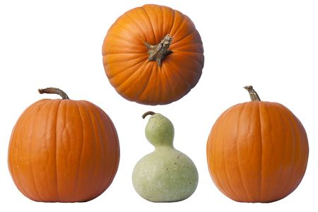 Pumpkins and a gourd isolated on white. Stock Photo