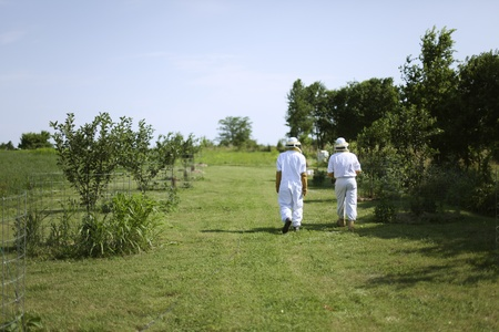 A father and son walk to the bee hive to check for honey.