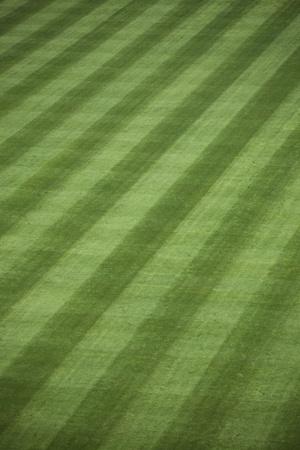 手入れの行き届いた外野の芝生の球場での背景。