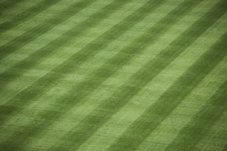 sod: Horizontal shot of manicured outfield grass at a baseball stadium.