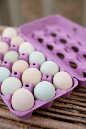 egg carton: Open crate of colorful organic eggs.