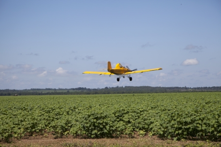 airfoil: Centered Crop Dusting Plane