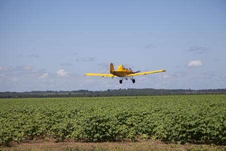 Centered Crop Dusting Plane