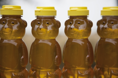 honey comb: Four honey bears sit in a row outside and are filled with organic, home-grown honey