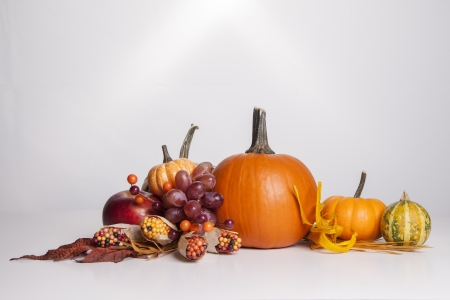 A group of fall decorations all sit together on a white background  photo