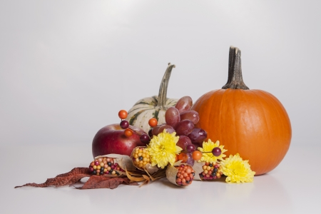A group of fall food decorations sit together on a white background  photo