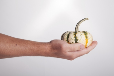 extends: A hand extends and holds a small multi-colored gourd on a white background