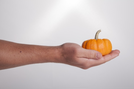 Extend: A hand extends and holds a small orange pumpkin on a white background