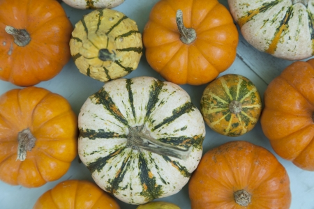 gourds: A group of colorful gourds are clustered together outside