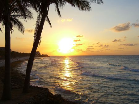 varadero: Tropical Beach Sunset Palm Trees Cuba Varadero