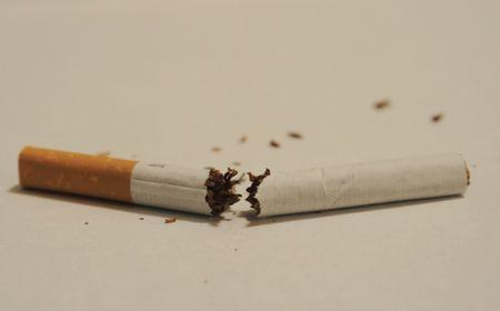 Broken cigarette Imagens