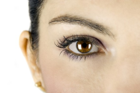 Close-up of big brown eye on white background photo