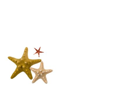 Three different stars in the lower left corner of photo on white background ,with free space for text Stock Photo - 4307318