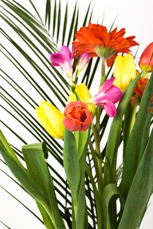 Spring flowers bouquet with tulips red and yellow and gerber on a palm leaf,selective focus on red tulip photo
