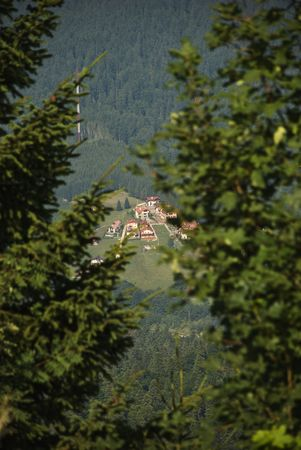 Small town seen from the mountains heights,viewing among the fir tress photo