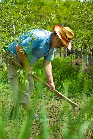 Portrait of happy peasant digging in the garden soil with spring onions at country photo