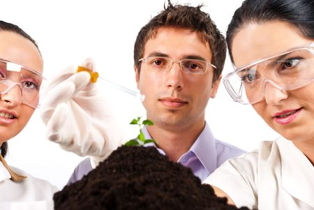 plant science: Close up of botanical scientists team working in laboratory,a woman holding a pipette and pouring liquid on a plant and the others looking