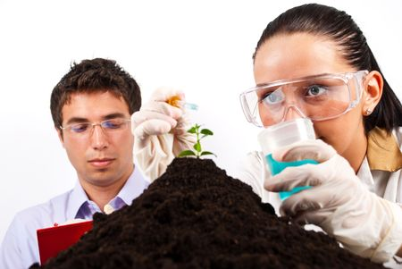 A young woman scientist  holding a pipette with a liquid and pouring on a plant in soil  while the man sitting in background and taking notes photo