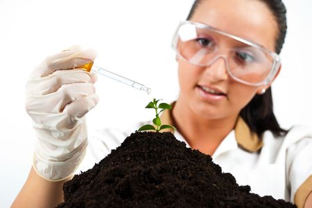 Scientist pouring liquid with a pipette on plant in laboratory photo