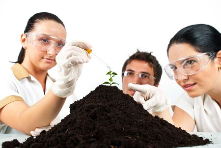 Botanical scientist team  in laboratory making experiments on a plant in soil , a scientist woman pointing to plant while her colleague pouring liquid with a pipette photo
