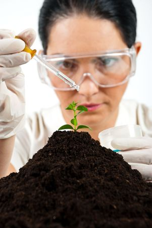 Agricultural woman scientist testing in laboratory ,she using a pipette with liquid on a plant in soil Stock Photo