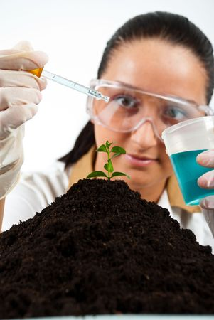 Young biologist woman making experiment in laboratory,selective focus on plant in soil photo