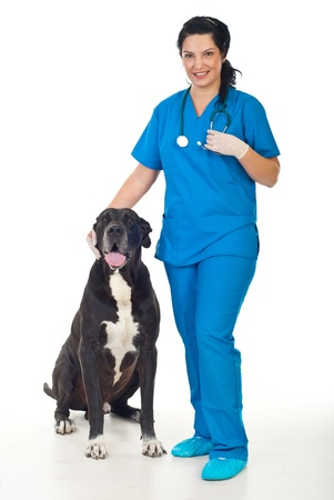 Full length of smiling veterinary woman with a great dane dog  photo