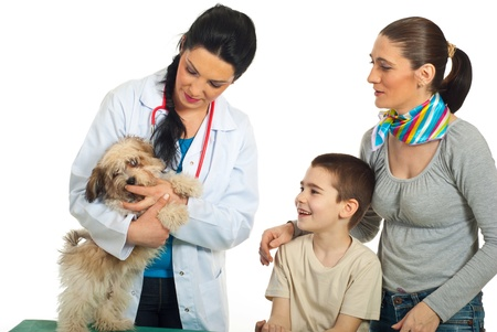 Vet doctor examine puppy dog and his family looking  at them isolated on white background photo