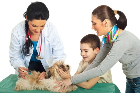 veterinary care: Doctor vet vaccine puppy dog and his family holding against white background