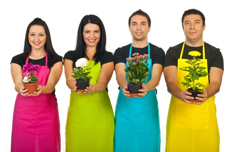 florist shop: Team of four florist workers in a shop showing different flowers in pots isolated on white background Stock Photo