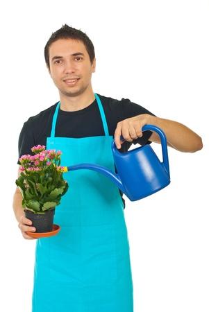 regar las plantas: El hombre Jardinero kalamchoe riego aisladas sobre fondo blanco
