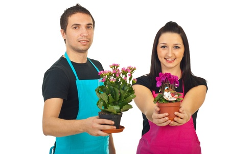 Two florists holding flowers in pots for sale isolated on white background photo