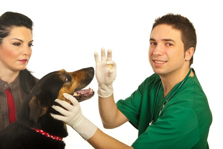 doctor giving pills: Happy doctor vet man giving pill to dog and dog owner woman looking  isolated on white background