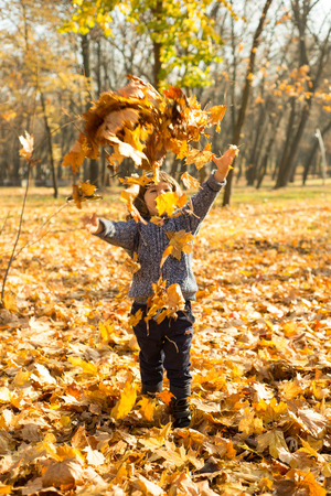 tossing: Happy kid tossing autumn leaves in park in sunny day