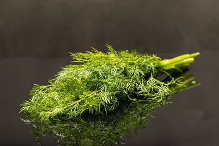 Fresh bouquet of dill against black background with reflection