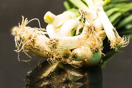 Green onion against black background with reflection