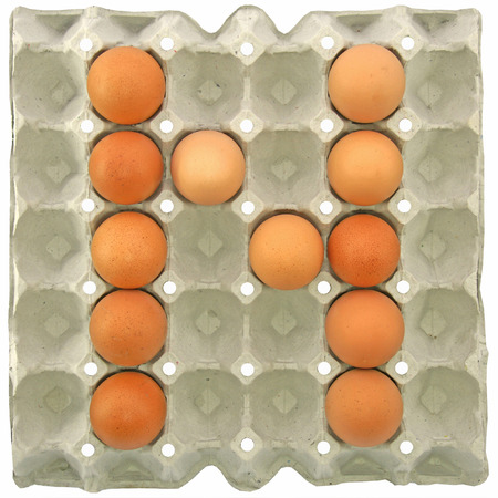 letter paper: A letter N from the eggs in paper tray for food or nutrition concept