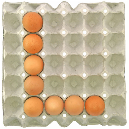letter l: A letter E from the eggs in paper tray for food or nutrition concept