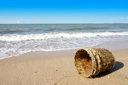 attach: percebes unidos al cubo de plástico en una playa junto al mar