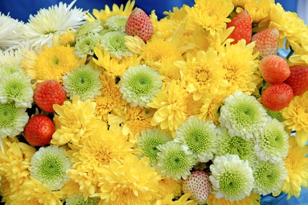 georgina: Chrysanthemum flowers arranged with strawberry for decoration concept