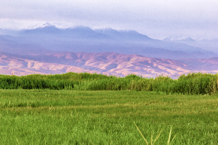 high mountain meadow grass against the backdrop of mountain slopes and peaks on a warm summers day Stockfoto