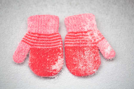 Red mittens in the winter forest. Frozen plants . Snow and snowflakes on the background.