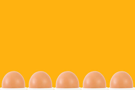 brown background: row of egg on orange background
