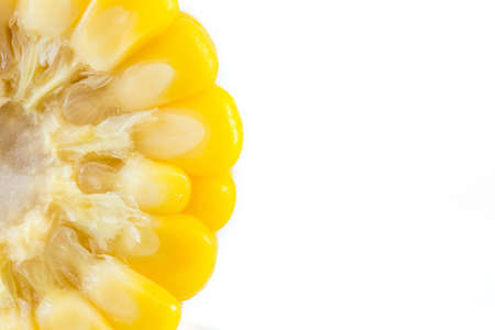 processed grains: Ear of Corn on white background