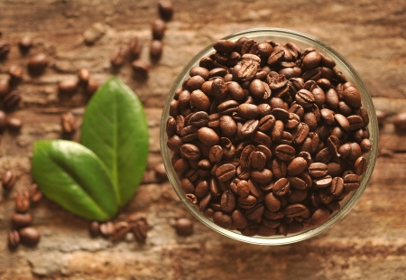 Coffee beans with leaves on the wooden board Stock Photo - 16963459