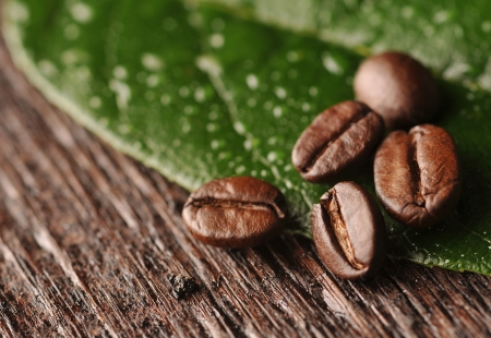 Coffee beans with freen leaf on the wooden board Stock Photo - 16963463