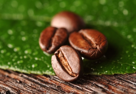 Coffee beans with freen leaf on the wooden board Stock Photo - 16963460