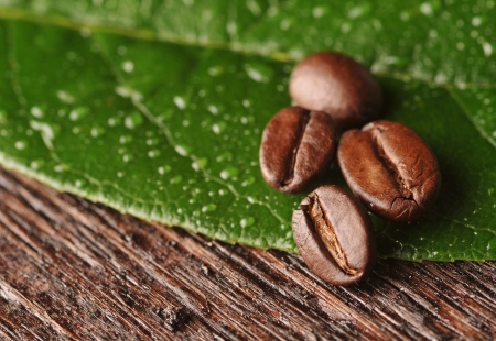 Coffee beans with freen leaf on the wooden board photo